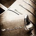 1955 Chevrolet Nomad Wagon Taillight Emblem by Jill Reger