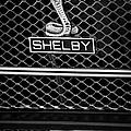 1969 Shelby Gt500 Convertible 428 Cobra Jet Grille Emblem by Jill Reger