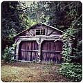Abandoned Barn by Natasha Marco