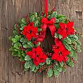Advent Wreath With Winter Rose by U Schade