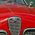 Alfa Romeo Grille Emblem by Jill Reger
