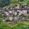 Alpine Village by Mats Silvan