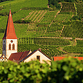 Alsace Church by Brian Jannsen