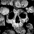 Altered Image Of Skulls And Bones In The Catacombs Of Paris France by Richard Rosenshein