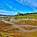 #3 At Chambers Bay Golf Course - Location Of The 2015 U.s. Open Championship by David Patterson