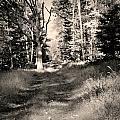 Autumn 2013 by Chet B Simpson