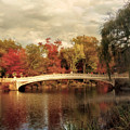 Autumn At Bow Bridge by Jessica Jenney