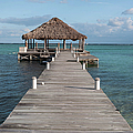 Beach Deck With Palapa Floating In The Water by Brandon Bourdages