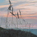 Beach Morning View by Patty Weeks