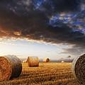 Beautiful Golden Hour Hay Bales Sunset Landscape by Matthew Gibson