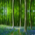 Blue Bell Art Digital Art by David French