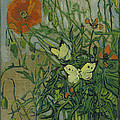 Butterflies And Poppies by Vincent Van Gogh