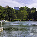 Central Park Pond by Madeline Ellis