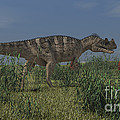 Ceratosaurus Hunting In Prehistoric by Kostyantyn Ivanyshen