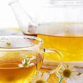 Chamomile Tea by Elena Elisseeva