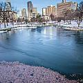 Charlotte North Carolina Marshall Park In Winter by Alex Grichenko