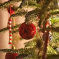 Christmas Tree Ornaments by Alex Grichenko