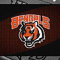 Cincinnati Bengals by Joe Hamilton