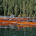 Show Boats by Steven Lapkin