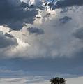 Clouds Over Maasai Mara, Kenya by John Shaw