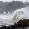 Coastal Wave During Typhoon Usagi by Jim Edds