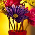 Daisies In A Vase On Shelf by Jim Corwin