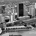 Downtown Skyline Of Toledo Ohio by Bill Cobb