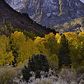 Eastern Sierras In Autumn by John Shaw