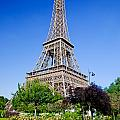 Eiffel Tower by Michal Bednarek
