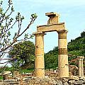 Ephesus by Paul Sandilands