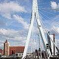 Erasmus Bridge In Rotterdam by Artur Bogacki