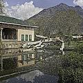 Fallen Tree In Water Pool Inside The Shalimar Garden In Srinagar by Ashish Agarwal