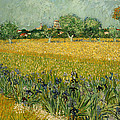 Field With Flowers Near Arles by Mountain Dreams