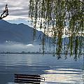 Flooding Lake by Mats Silvan
