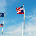 Fort Sumter, Sc by Millard H. Sharp