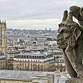 Gargoyle Overlooking Paris by Brian Kamprath