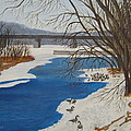 Geese On The Grand River by Lisa MacDonald