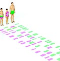 Genetic Relationships Of A Family by David Parker