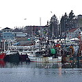 Gloucester Fishing Boats by Susan Wyman