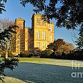 Hardwick Hall Through The Trees by Moments In Time Photographics