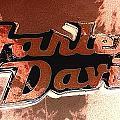 Harley Davidson by Richard John Holden RA
