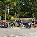 Hogs And Choppers by Laura Fasulo