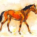 Horse Portrait by Kurt Tessmann