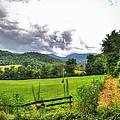 Iotla Valley by Savannah Gibbs