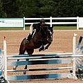 Jumper9 by Janice Byer