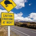 Kiwi Crossing Road Sign And Volcano Ruapehu Nz by Stephan Pietzko