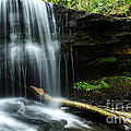 Lin Camp Branch Waterfall by Thomas R Fletcher
