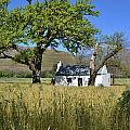 Little Farm House by Werner Lehmann