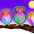 3 Little Owls In The Moonlight by Nick Gustafson