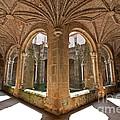 Medieval Monastery Cloister by Jose Elias - Sofia Pereira